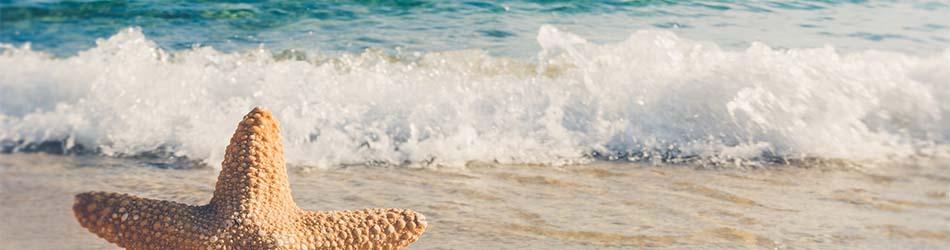 Alquiler de chalets de lujo en la Costa Blanca